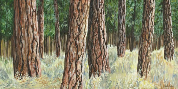 Ponderosa Pine tree painting