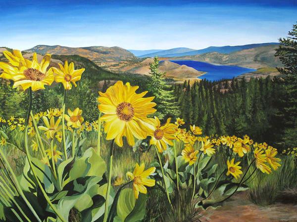 Balsam root, Okanagan sunflowers
