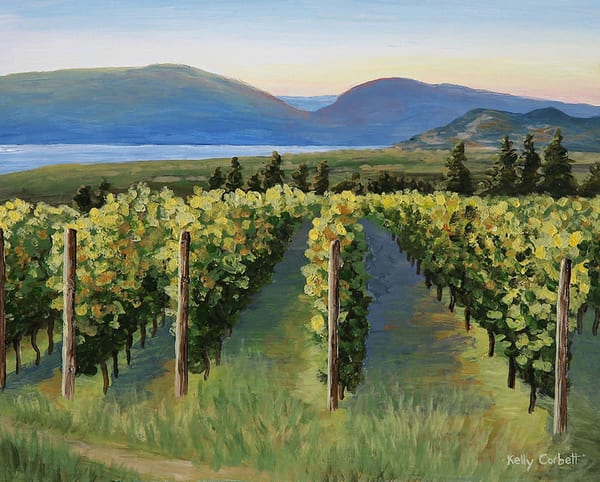 Okanagan vineyard