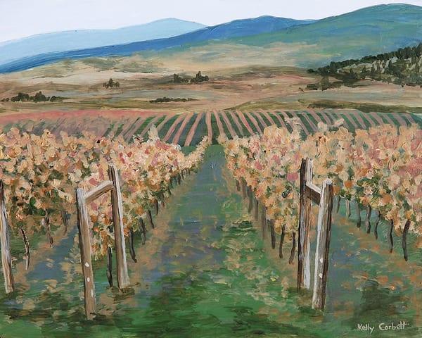Winter vineyard in the Okanagan