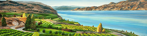Vineyard view in Summerland, BC