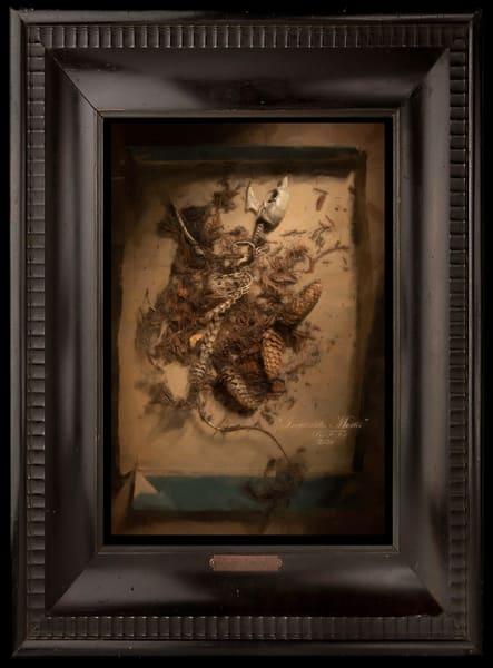 Inevitabilis Mortis, Limited Edition Encaustic, Ben Fink, Art Prints,