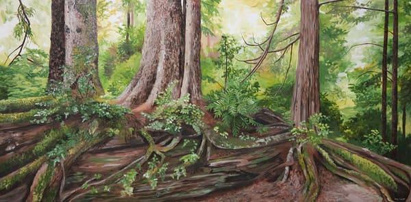 Nurse log, trees in the Broken Island Group