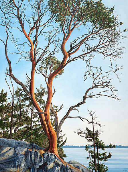 Poise, arbutus tree limited edition fine art print