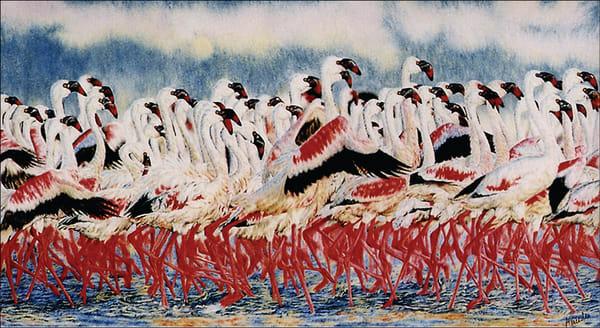 Flamingo   Original Art | Mercedes Fine Art