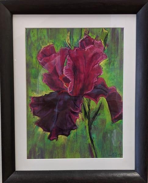 Kay Ridge - original artwork - nature - flower - iris - Portrait of an Iris
