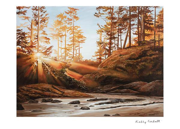 Daybreak, Tofino west coast landscape art card