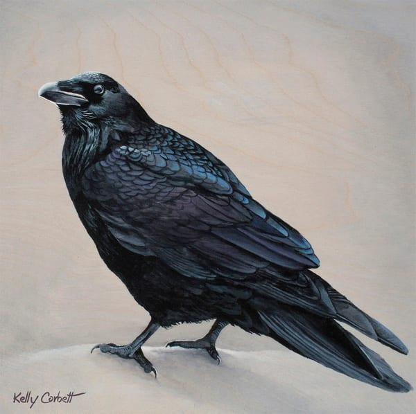 Winter Raven Fine Art Card
