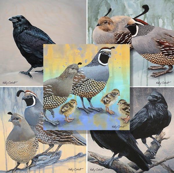 Pack of five bird art cards