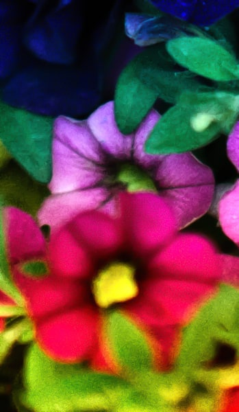 Petunias Blooming Photography Art | Nature's Art Productions