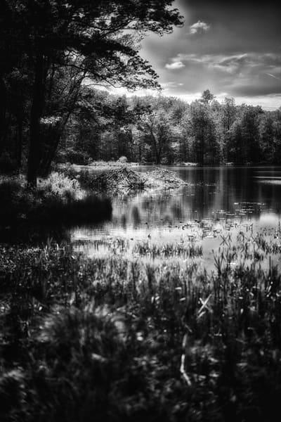 L1001688 Edit Edit Photography Art | Nature's Art Productions