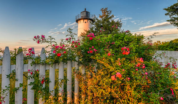 East Chop Light Summer Roses Photography Art | Michael Blanchard Inspirational Photography - Crossroads Gallery
