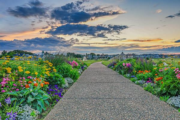 Ocean Park Summer Flowers Photography Art | Michael Blanchard Inspirational Photography - Crossroads Gallery