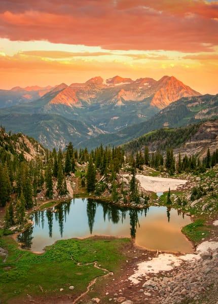 silver glance vertical golden sunset