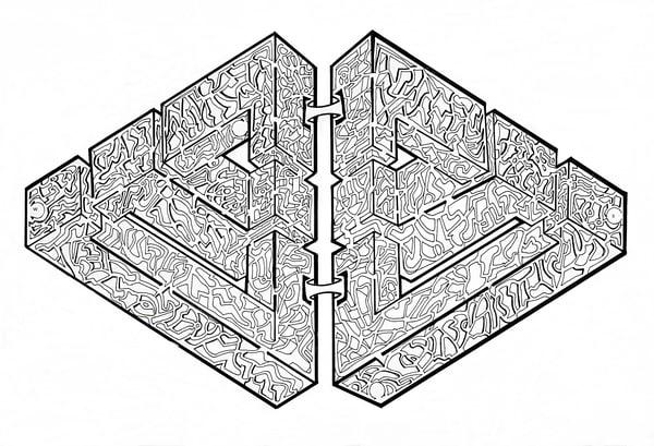 Illusion Maze Art