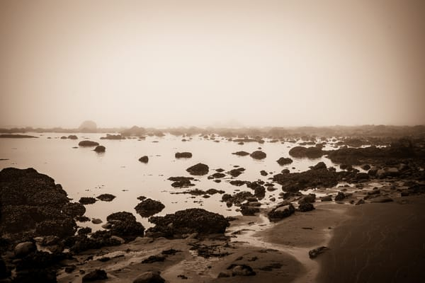 Coastal Study in Black and White #1 - foggy morning on the beach in Ozette, Washington photograph print