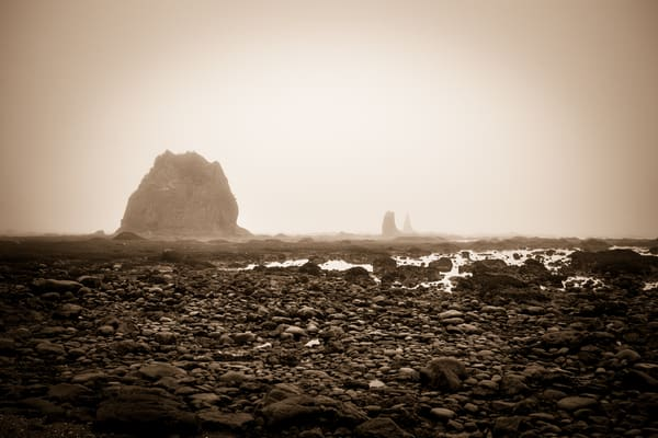 Coastal Study in Black and White #2 - foggy morning on the beach, in Ozette, Washington photograph print