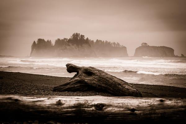 Coastal Study in Black and White #5 - foggy sunrise on Rialto beach, Washington photograph print
