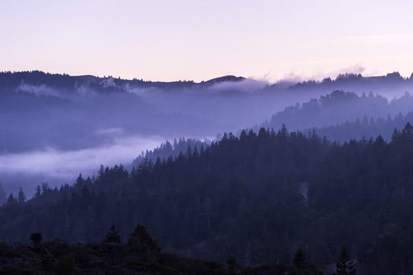 Mt. Tam Sunset - foggy sunset in Marin County, California photograph print