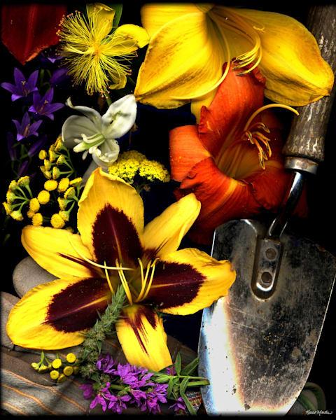 Afternooninthegarden  Photography Art | Koral Martin Healthcare Art