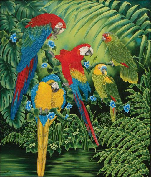 Parrots   Original Art | Mercedes Fine Art