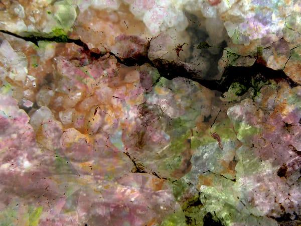Momma's Flowers, Pap's Rocks 4