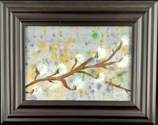 Carolyn Fuller - original artwork - flowers - nature - watercolor - Pussy Willow in Gray