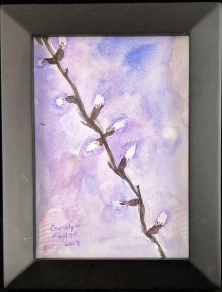 Carolyn Fuller - original artwork - flowers - nature - watercolor - Pussy Willow in Pink