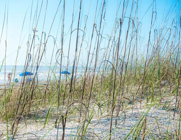 Blue Beach Umbrellas Through The Grass