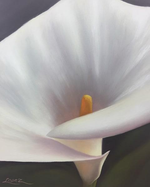 Calla Lily Ii Art | Gema Lopez Fine Arts