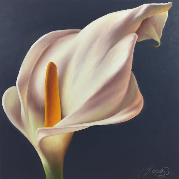 Calla Lily I Art | Gema Lopez Fine Arts