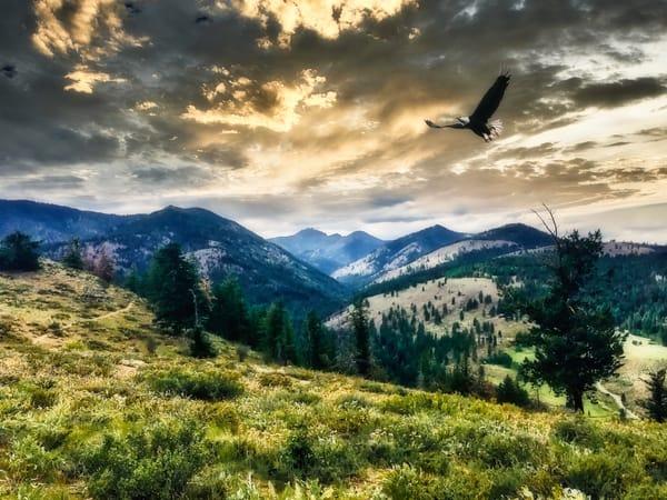 Sunset Valley Photography Art | CJ Harding