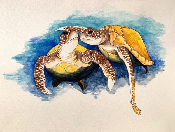 Two Sea Turtle Love