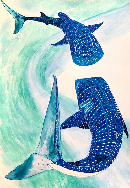 Whale Sharks ocean fish watercolor blue and green print
