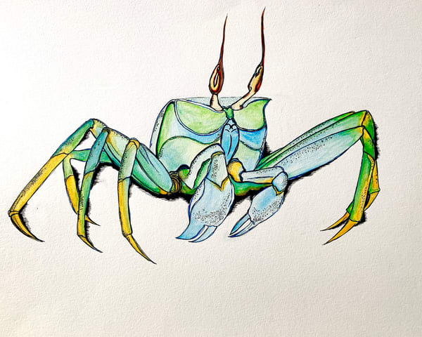 Ghost Crab Art | Lindberghaus, Art by Dagi G.
