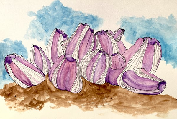 Purple Barnacles Art | Lindberghaus, Art by Dagi G.