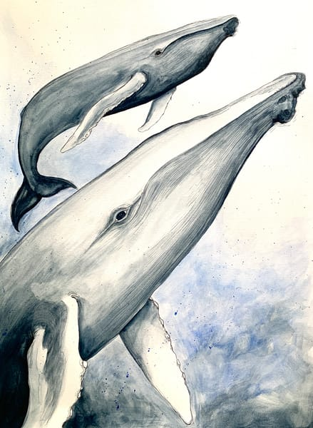 Newborn Humpback Whale Art | Lindberghaus, Art by Dagi G.
