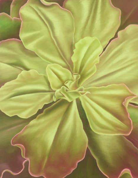 Dreams Of Green Art | Gema Lopez Fine Arts
