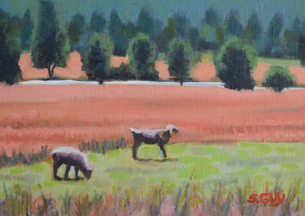 Upstate Pasture   Original Oil Art | Sharon Guy