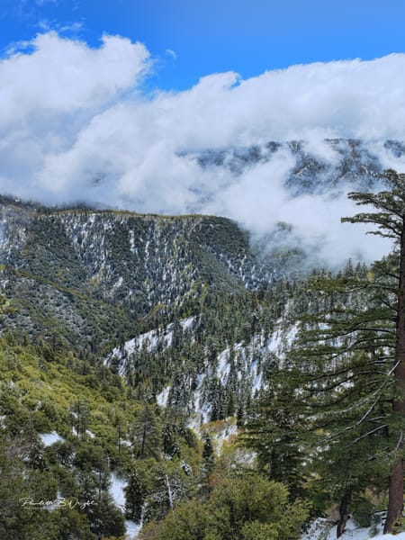 Get Away To The San Bernandino Mountains in California!