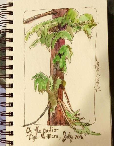 Treesvancouver w7wgsv