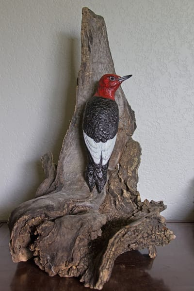 """Red Alert!""   Red Headed Woodpecker Art 