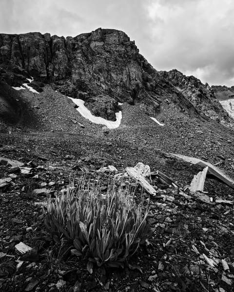 Summer, Virginius Mine Road, Colorado, 2013