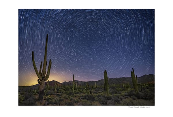 Starry Skies Over Tucson Mountain Park   Signed 2019 Photography Art | Carol Brooks Parker Fine Art Photography