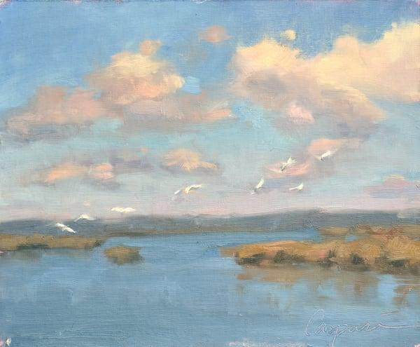 Currituck Seagulls   Art | robincaspari