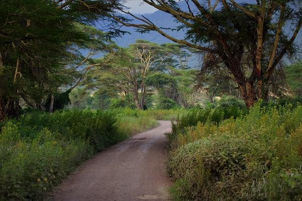 Ngorongoro Landscape Art | DocSaundersPhotography