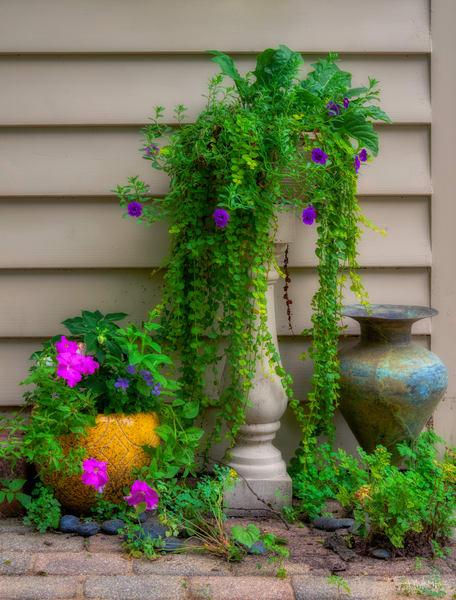 Ellen's Garden No. 3, 2020, by Thomas Wyckoff.
