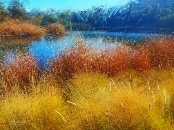 Dixon Lake Winter Reeds - digital painting photograph
