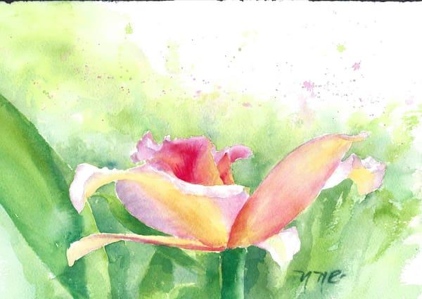 Daily Orchid Candy Art | Nancy Reyna Fine Art