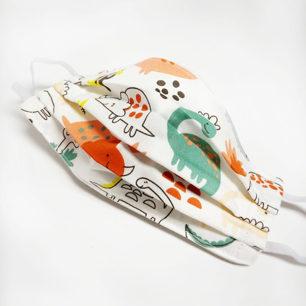 Child Mask: Dinosaurs Groove (Elastic Or Ties) Art | Youngi-Sumistyle pets